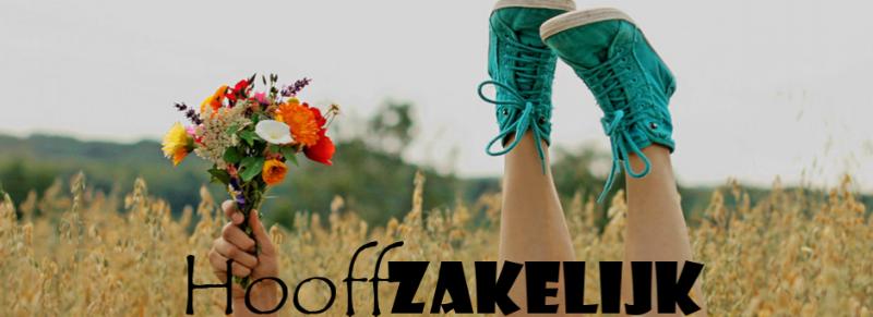 cropped-header-HooffZakelijk-3