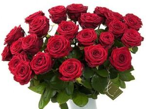 bos_bloemen_Rode_rozen_a_160041