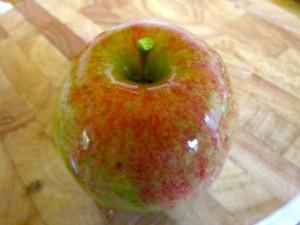 appel Anne van Hees 01