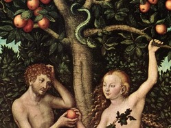 normal_Tree_of_knowledge__Adam_Eve